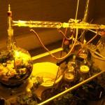 de-stilling-a-still-life apparatus